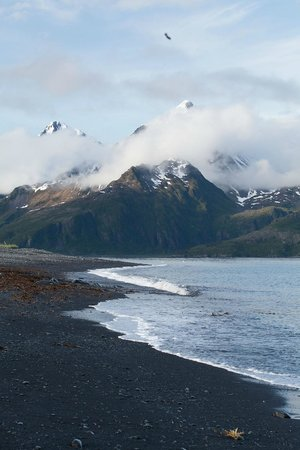 Kenai Fjords Glacier Lodge : Evening walk on the beach.