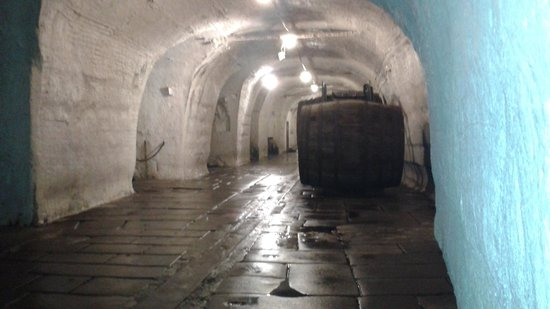 Pilsner Urquell Brewery: Cellar w/ barrels of beer