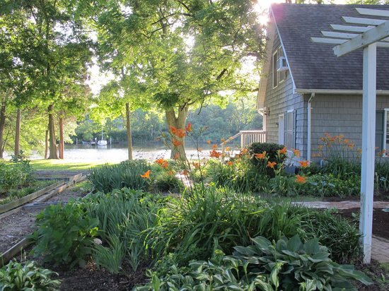 Bay Cottage Bed & Breakfast: Welcoming cottage gardens