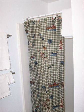 Blue Springs Lodge: Bathroom Shower