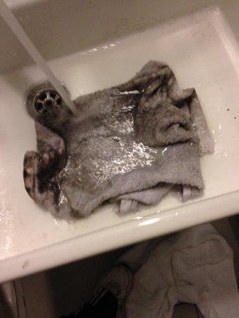 Royal Palms Resort & Spa : black mold on white rag