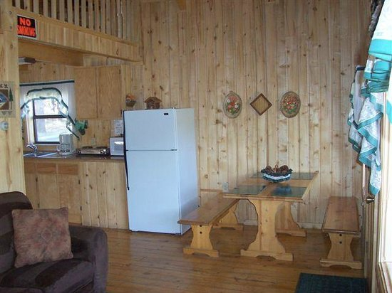 Blue Springs Lodge: Fridge and Dining Area