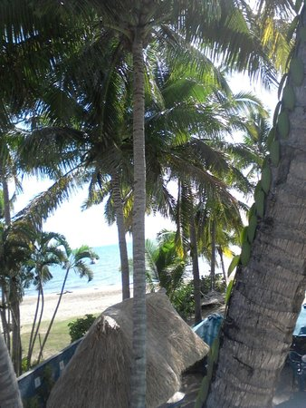 Aquarius On The Beach: View