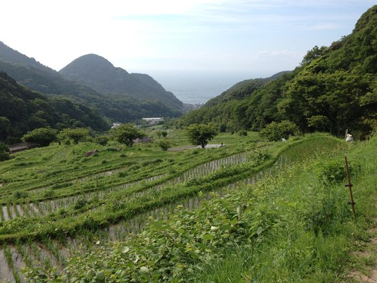 Kumomi, Ishibu, Iwachi, Matsuzaki Beach: 作業をしている方もいるのでマナーは守りましょう