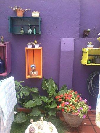 Purple House Hostel: Aconchegante