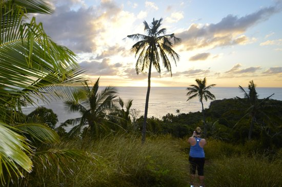 Paradise Cove Resort: Sunset hike near the top of the bush trail