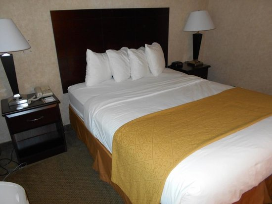 Quality Inn Arlington: Room
