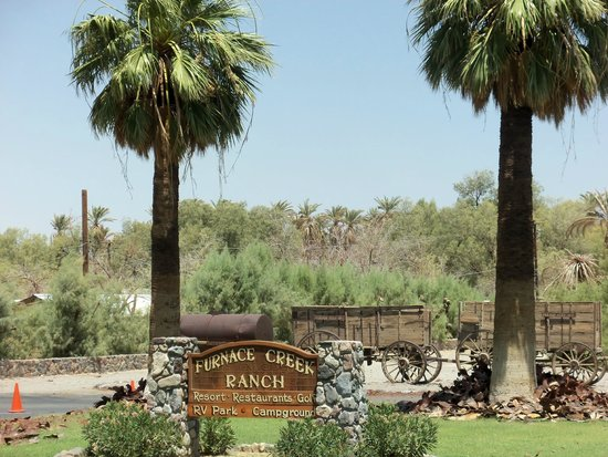 Furnace Creek Inn and Ranch Resort: An oasis with palm trees in the desert.