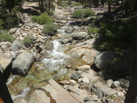 Lodgepole Campground: River running through Lodgepole