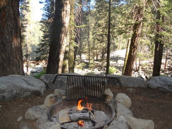 Lodgepole Campground: View from campsite #74