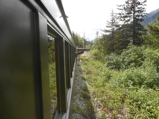 White Pass & Yukon Route Railway: Too many pictures to share.