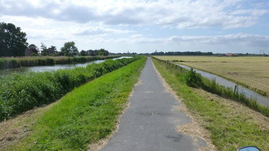 Scooter Experience: Cycling path