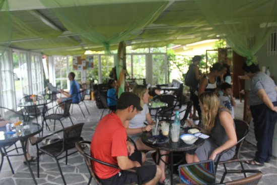 Butterfly Cafe : view of cafe