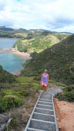 Waiwurrie Coastal Farm Lodge : coastal walk