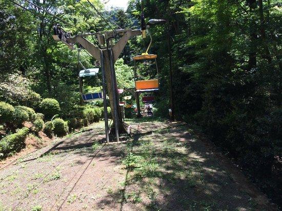 Mt. Takao Chairlift: リフトからの景色1