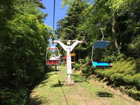 Mt. Takao Chairlift: リフトからの景色2
