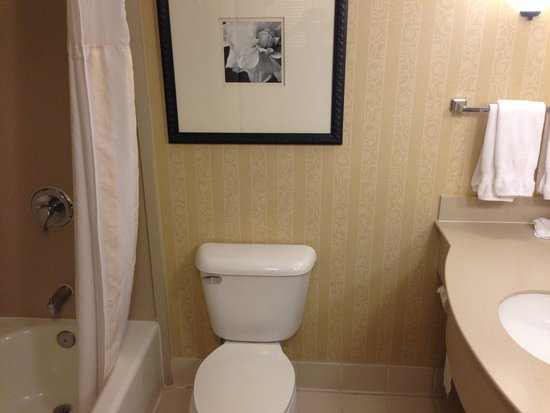 Hilton Garden Inn Seattle/Renton : Bathroom