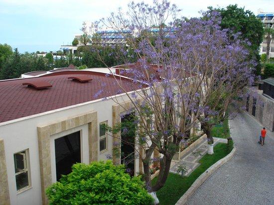Horus Paradise Luxury Resort: Бунгало.