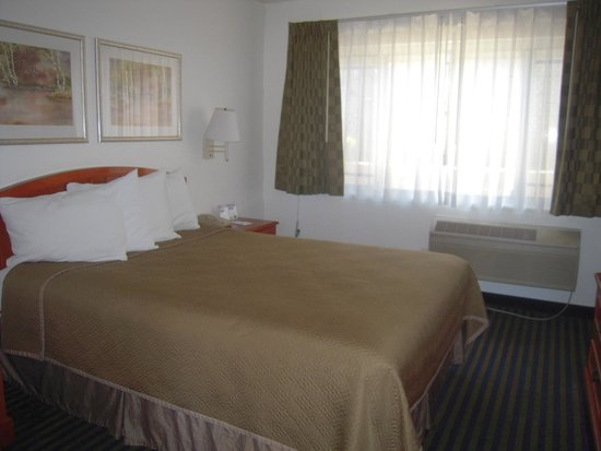 Travelodge Hollywood-Vermont/Sunset : Chambre