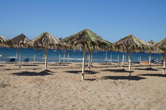 Strofades Beach Hotel: Plaża przed Strofadesem
