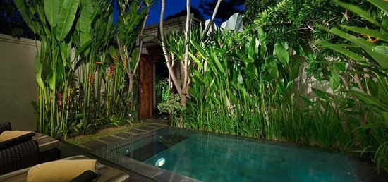 White Rose Kuta Resort, Villas & Spa: One Bedroom Pool Villa - Pool Garden