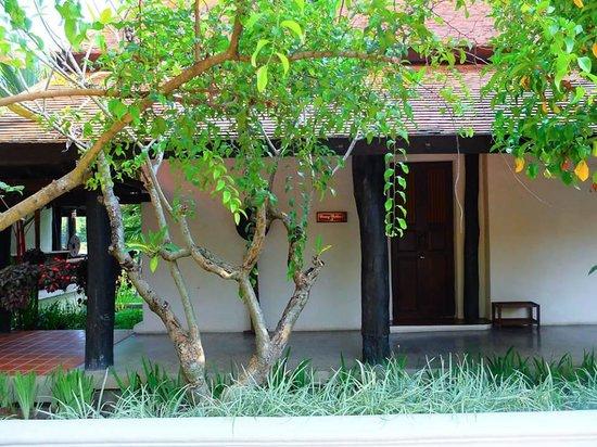 Horizon Village & Resort : Deluxe Room Exterior