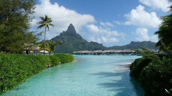 InterContinental Bora Bora Resort & Thalasso Spa : A slice of heaven