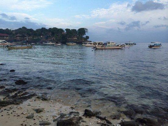 Molamola House: What the beach really looks like #3