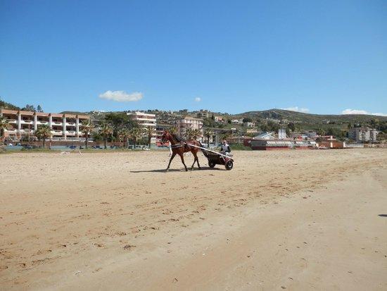 Villa Romana Hotel: spiaggia di fronte all'hotel