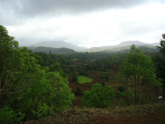 Grassroutes: view from camp