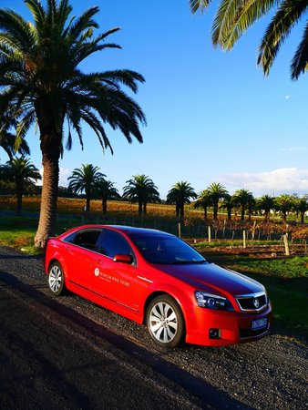 Premium Wine Tours by Scott Ninnis - Private Tours: Seppeltsfield Road, Barossa Valley