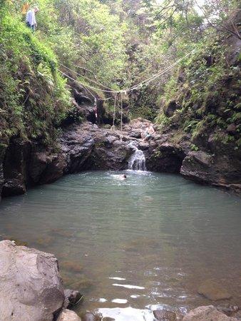 Cardiac Hill Picture Of Waimano Pool Trail Pearl City Tripadvisor