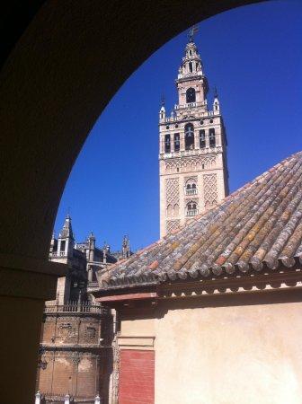 Hotel Dona Maria: お部屋からの眺め 朝