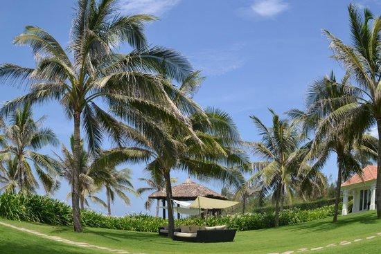 Boutique Hoi An Resort: Территория отеля