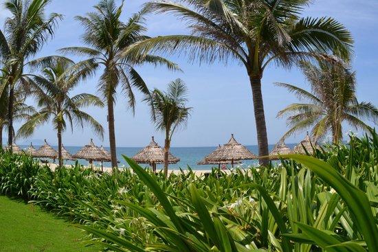 Boutique Hoi An Resort: Обалденный пустой пляж