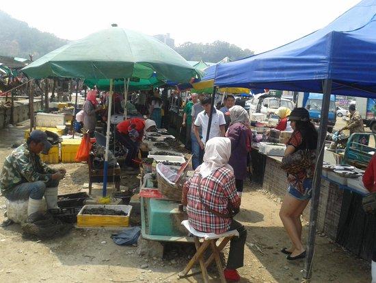 Port Athur: fish market at lu shun port
