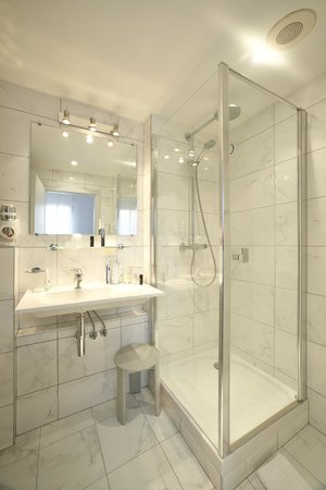 Hotel du Dragon : Salle de bain