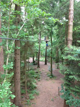 Go Ape at Forest of Dean, Gloucestershire: One of the zip wires