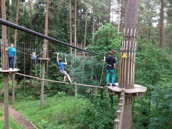 Go Ape at Forest of Dean, Gloucestershire: Balance beams