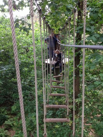 Go Ape at Forest of Dean, Gloucestershire: Wobble course