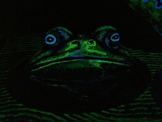 Putting Edge: Frog