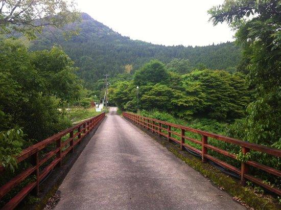 Iris Park: Walk down the bridge, the park is 100m on the left