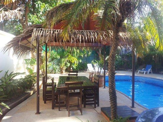 Thalassa: Le jacuzzi et la piscine.....