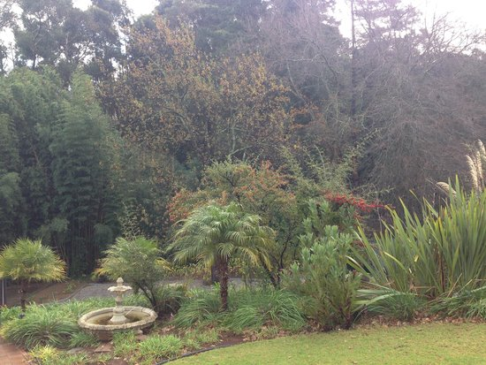 Silver Forest Boutique Lodge & Spa: Part of the garden