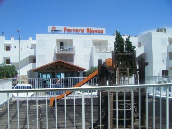Aparthotel Ferrera Blanca: .