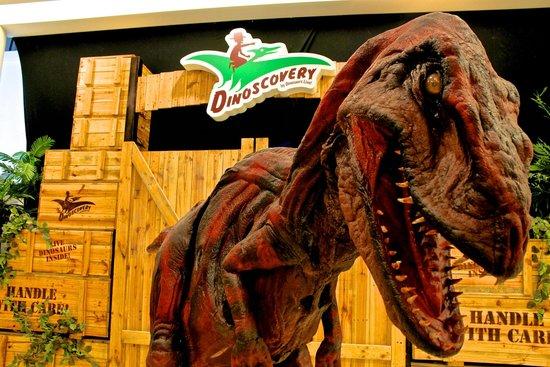 Dinoscovery