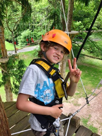 River Dart Country Park: on the ropes