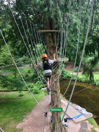 River Dart Country Park: The High Ropes (extra cost)
