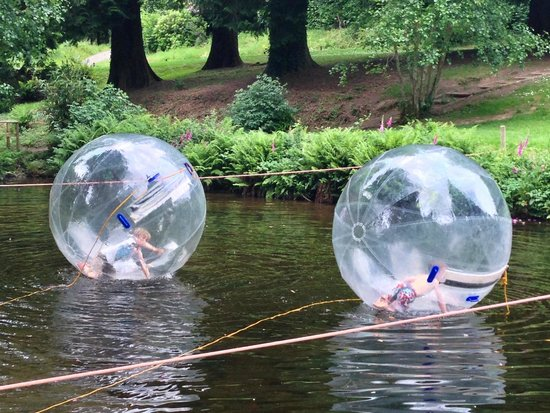 River Dart Country Park: water zorbs (extra)