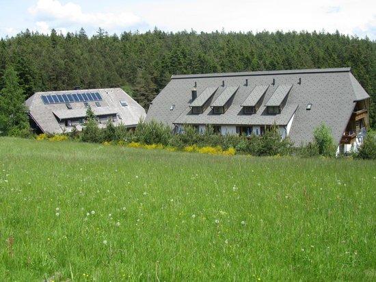 Alles Im Grünen Bereich Bild Von Hotel Schöne Aussicht Hornberg